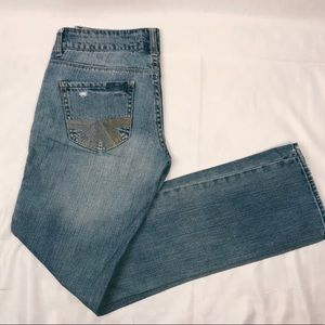 American Eagle Outfitters Destroyed Straight Jeans
